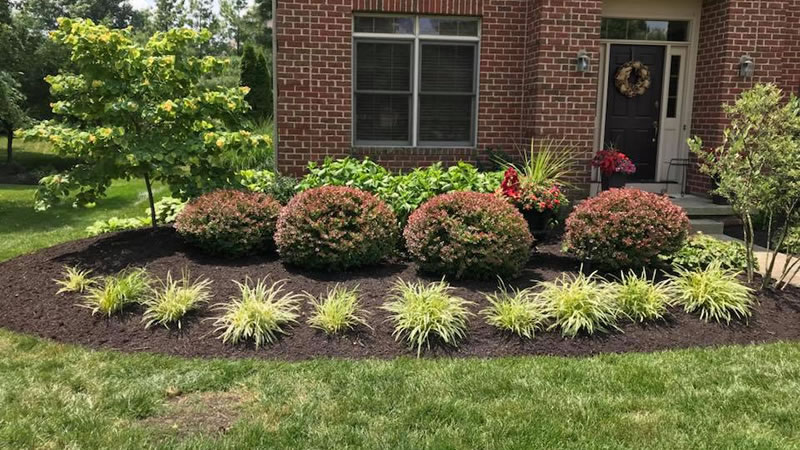Residential & Commercial Landscaping Sydney Services