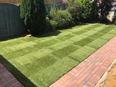 Tree Felling & Landscaping paving services Sydney